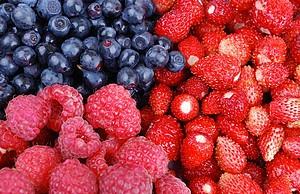 Panier petits fruits