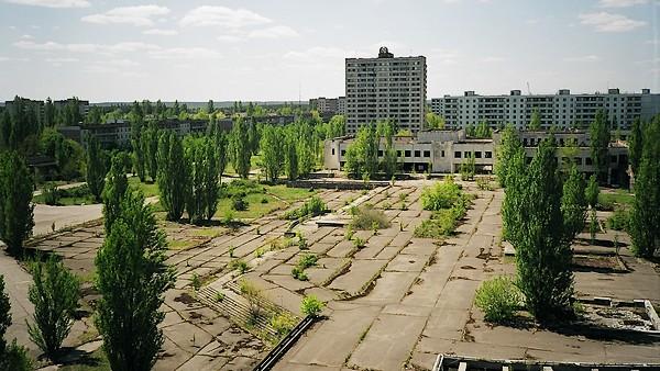 Tchernobyl_vegetation